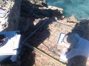 Recording artefacts along Transect A.