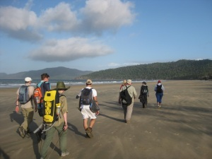 [The practicum participants walking back to camp from North Shepherds Bay, Hinchinbrook Island, Queensland on 8 July, 2013; photo courtesy of: Chelsea Pasch]