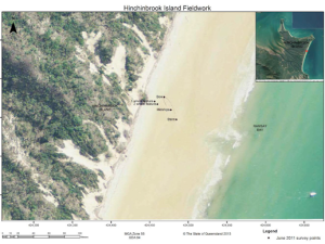 Belle's orientation and position on the beach at Ramsay Bay (Waterson 2013:2).