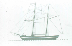 Clarence line drawing. Image courtesy Heritage Victoria