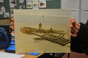 Photograph of wreck on Kirra beach 1974
