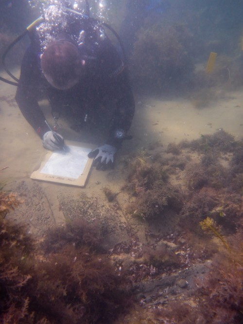 Figure 4. A Flinders University Maritime Archaeology Student, records the Clyde-built Leven Lass during the 2014 field school on Phillip Island, Victoria. Another field school is scheduled for February 2015 (Photo by: J. Benjamin).