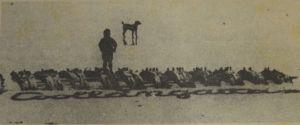 coolangatta 1930