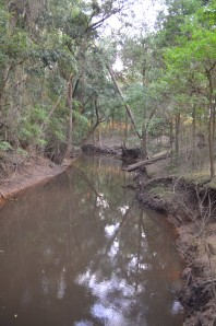 Belli Creek at Mimburi